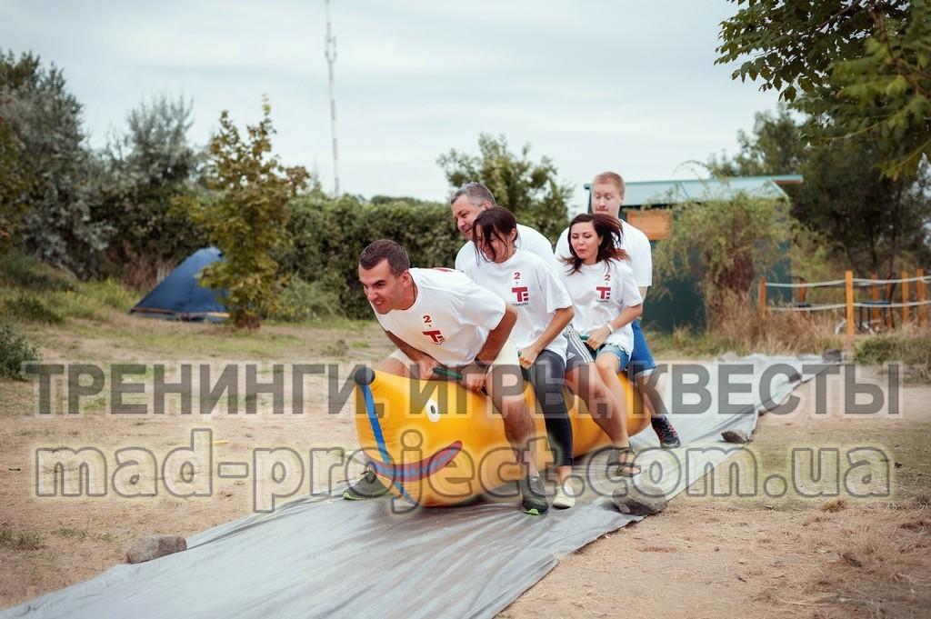 Организация тимбилдинга в Киеве